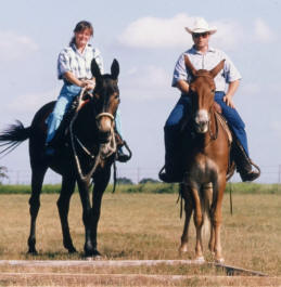 Jim & Sue love to trail ride.